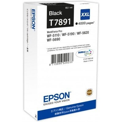 Epson Ink Must HC (C13T789140)