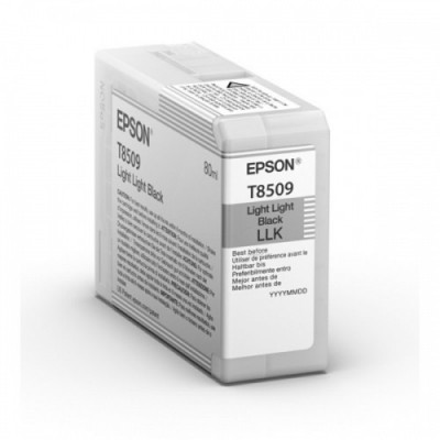 Epson Ink Light Light Must UltraChrome HD (C13T850900)